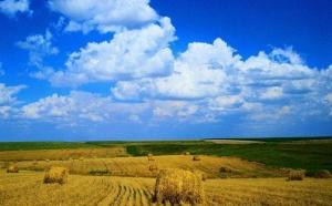 В Краснодарском крае запретят перевод сельхозземель под жилую застройку, это коснется и виноградопригодных участков. Соответствующие изменения внесут в краевое законодательство. Об этом сообщил губернатор Краснодарского края Вениамин Кондратьев.