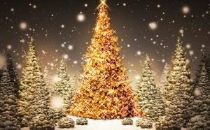 Коллектив доски объявлений по недвижимости на море Мега спешит поздравить всех с наступающим 2014 годом и Рождеством Христовым. Мы желаем всем крепкого здоровья, мирного неба над головой, любви и счастья в новом году.