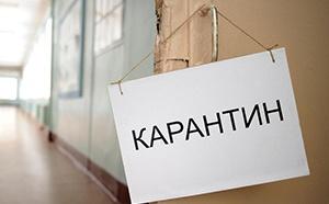 Все прибывающие из за границы в Россию должны проходить двухнедельную изоляцию. Соответствующее распоряжение дала главный санитарный врач РФ Анна Попова.